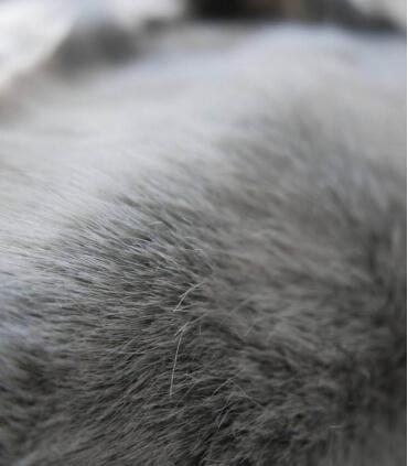 Couvre-lit Fausse Fourrure Luxe Gris Chartreux 250 X 250 cm