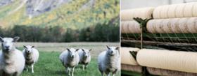 Plaids Roros Tweed